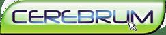 Cerebrum - imagem: cerebrum.com.br